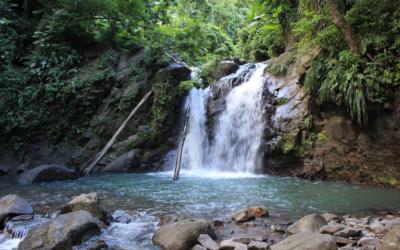 Quelques rivières et cascades en Martinique à ne pas manquer!